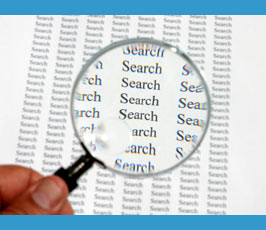 Magnified search term